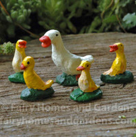 Miniature Duck and Four Tiny Ducklings