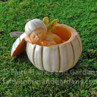 Fairy Baby Sleeping in White Pumpkin Shell