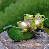 Fat Little Frogs on a Peapod Boat