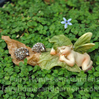 Miniature Fairy Baby with Hedgehogs