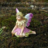 Micro Mini Fairy Petal