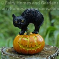 Miniature Scary Black Cat on Jack o' Lantern