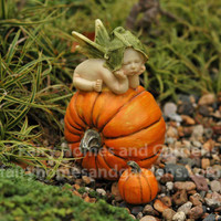 Fairy Baby on Pumpkin