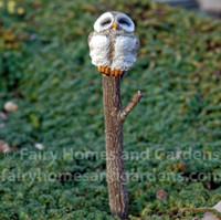 Sleepy Owl Atop a Woodland Branch