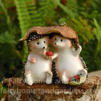 Miniature  Hedgehogs Sharing