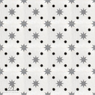DOUBLE STARS WHITE CEMENT TILES