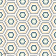 HEXAGON MCQUEEN CEMENT TILES
