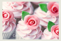 Cupcakes 124