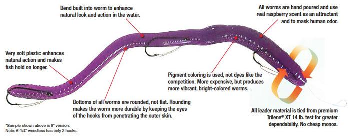theworm-info.jpg
