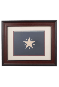 Flag - 1st Republic of Texas Historic Flag Print