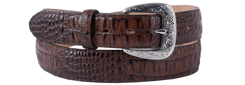 Chocolate Caiman Classic Belt