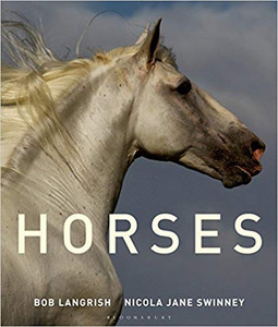 Horses by Nicola Jane Swinney
