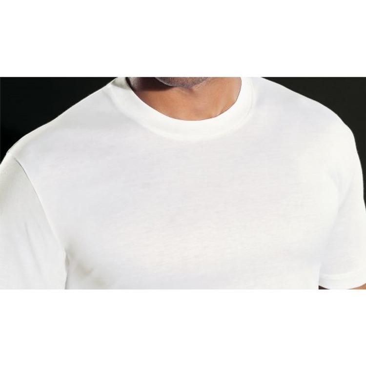 'Rugby E' Filo di Scozia Jersey Crew Neck T-Shirt in White (Size Medium) by Perofil