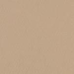 341603, Canson Mi-Teintes, Pearl