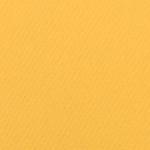 341607, Canson Mi-Teintes, Canary