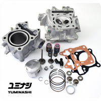 Full Yuminashi 153cc kit for 125cc engines.