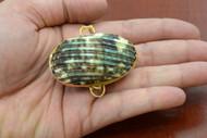 Green Cowrie Shell Trinket Box