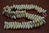 100 Pcs Small Yellow Moneta Cowrie Shell Beads