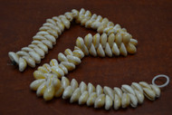 100 Pcs Small Golden Ring Cowrie Shell Beads