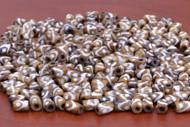 Coffee Brown Mudbone Wavy Dotted Bone Tube Beads 9mm