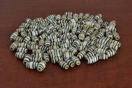 Coffee Brown Mudbone Wavy Bone Tube Beads 12mm
