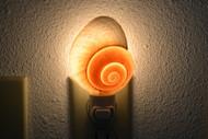 Brown Landsnail Seashell Nightlight