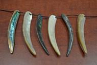 6 Pcs Assort Abalone Shell Tusk Pendants