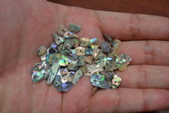 "100 Pcs Tiny Small Abalone Shell Blank Charms 1/4"" - 1/2"""