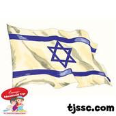 Israeli Flag Card Board Cut Outs