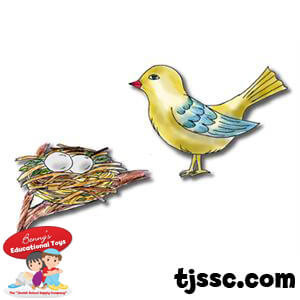Bird with a Nest Card Board