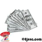 American  Play Money