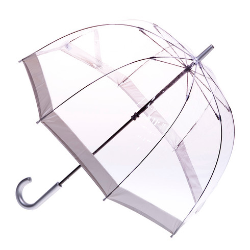 Clear with Silver Trim Umbrella