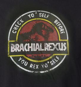 Brachialrexus