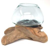 Glass Terrarium Molded on Driftwood (ML)