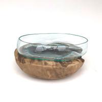 Glass Terrarium Molded on Driftwood (MR)