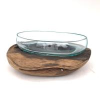 Glass Terrarium Molded on Driftwood (MS)