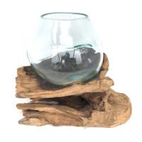 Glass Terrarium Molded on Driftwood (SR)