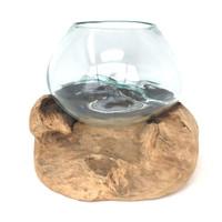 Glass Terrarium Molded on Driftwood (SP)