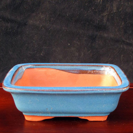 Bonsai Pot. Corn Flower Blue Rectangle