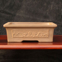 Etched Bonsai Pot