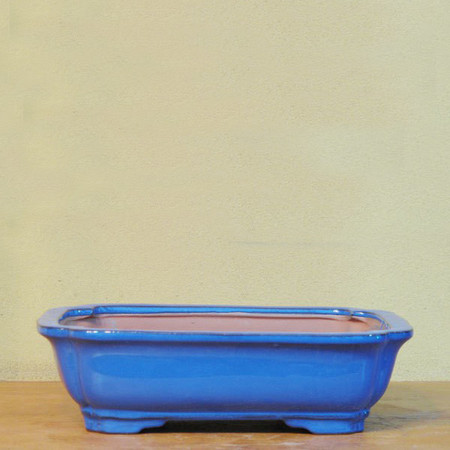 Bonsai Pot. Blue Rectangle (BP_Q)