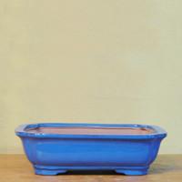 Bonsai Pot. Blue Rectangle (BP_Q)