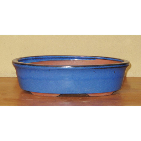 Bonsai Pot. Blue Oval