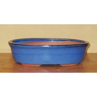 Bonsai Pot. Blue Oval