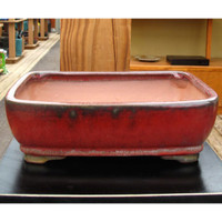 Red Rectangle Pot