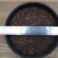 Fine Pine Bark Mulch (2 Quarts)