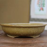 Robertson Bonsai Pot (RR_7Robertson)