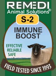 Sheep Immune Boost