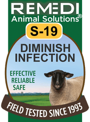 Diminish Infection in Sheep