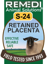 Retained Placenta for Sheep